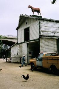 My first barn.