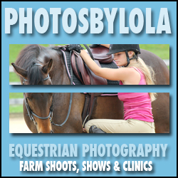 maryland horse photographer