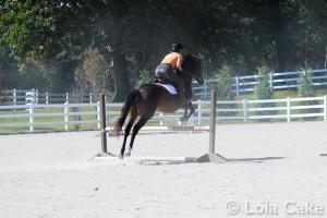 Jump Jez Jump!