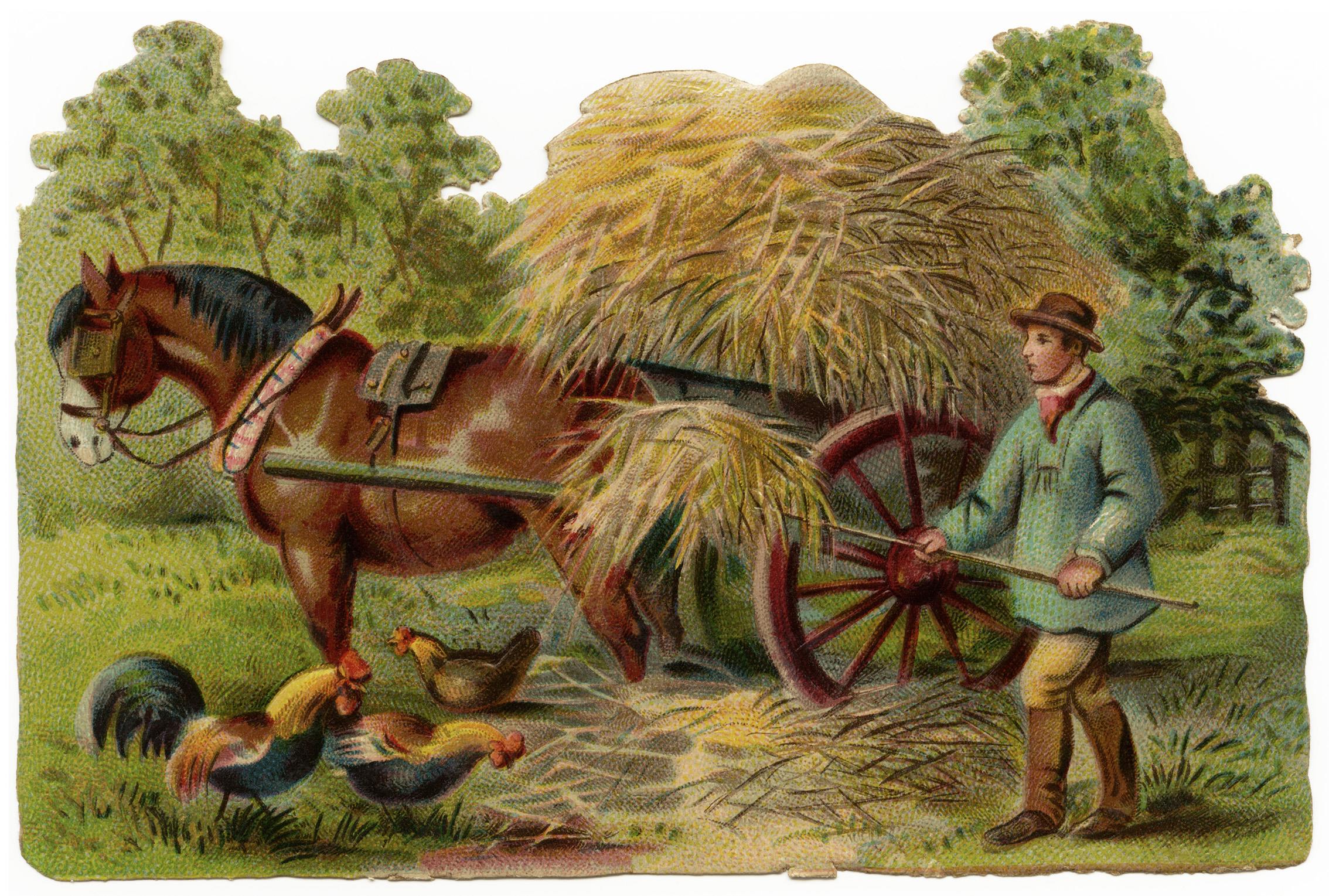 Buying Hay My Ex Racers